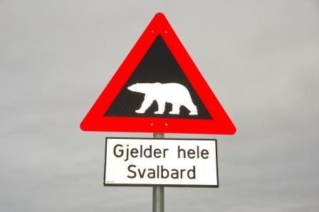 Skilt_isbjørn
