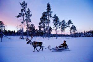 finland-landscape-4-1024x678
