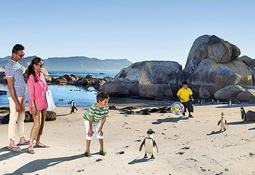 Turister og pingviner i Sydafrika. Foto: South African Tourism.