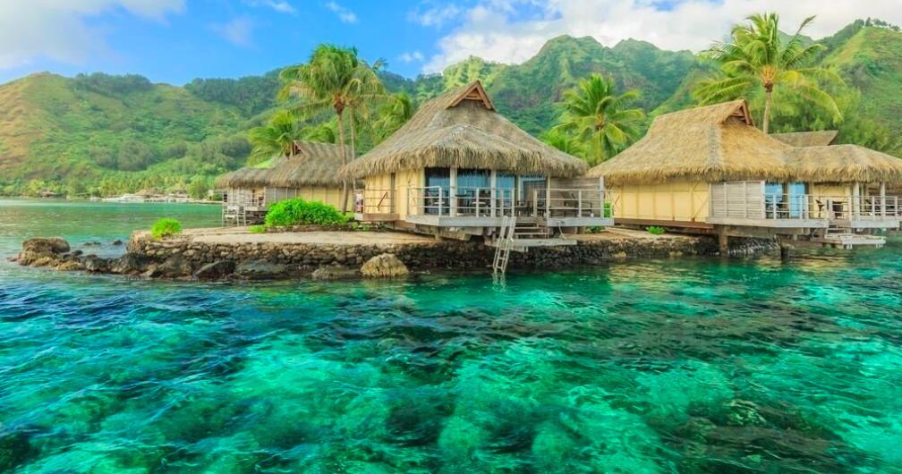 USA's hårdest arbejdende person kan vinde en rejse til eksotiske Tahiti. Foto: United Airlines