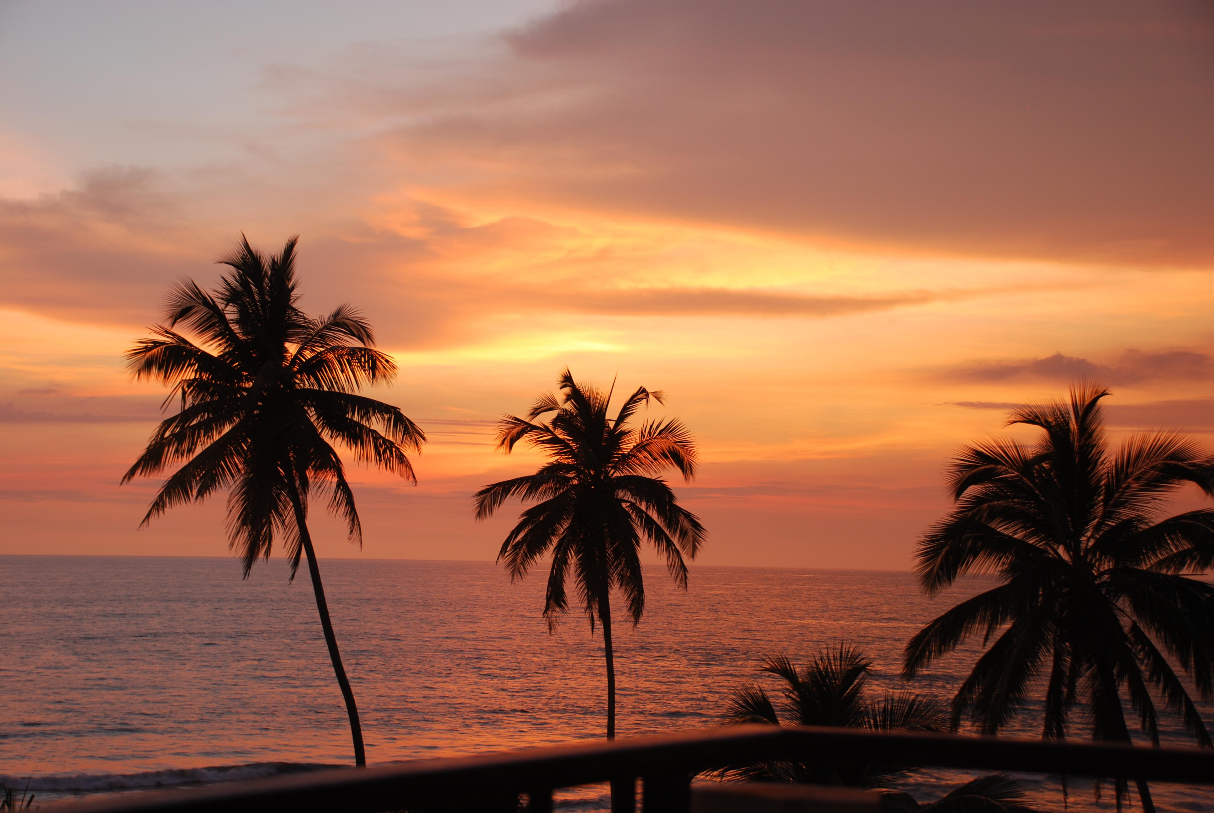 Sagen om et britisk par og deres rejsebureau følges af Danmarks Rejsebureau Forening, fordi sagen har principiel aspekt for rejsebureauers eventuelle ansvar for deres underleverandører, i dette tilfælde resortet på Sri Lanka. Arkivfoto fra Sri Lanka: Christian Funch.