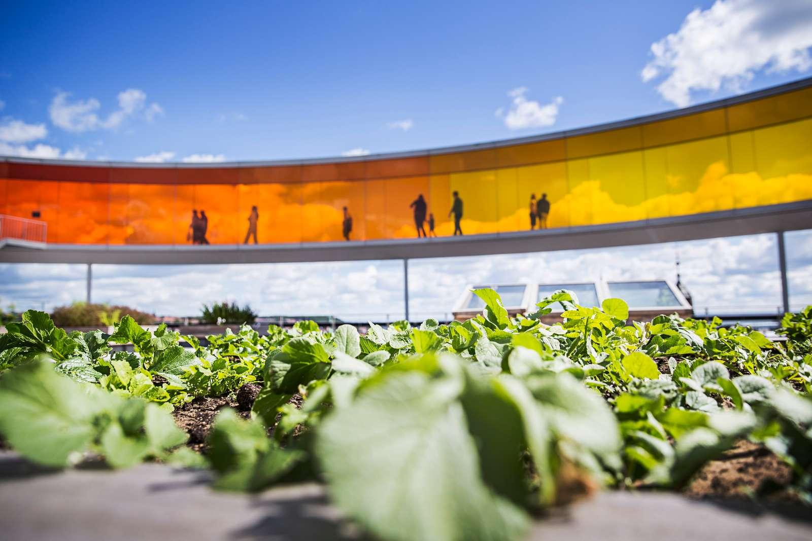 VisitAarhus, Aarhus Airport, SAS og VisitDenmark er gået sammen om en kampagne for at tiltrække flere udenlandske turister til Aarhus. Foto for VisitAarhus, Anders Trærup.