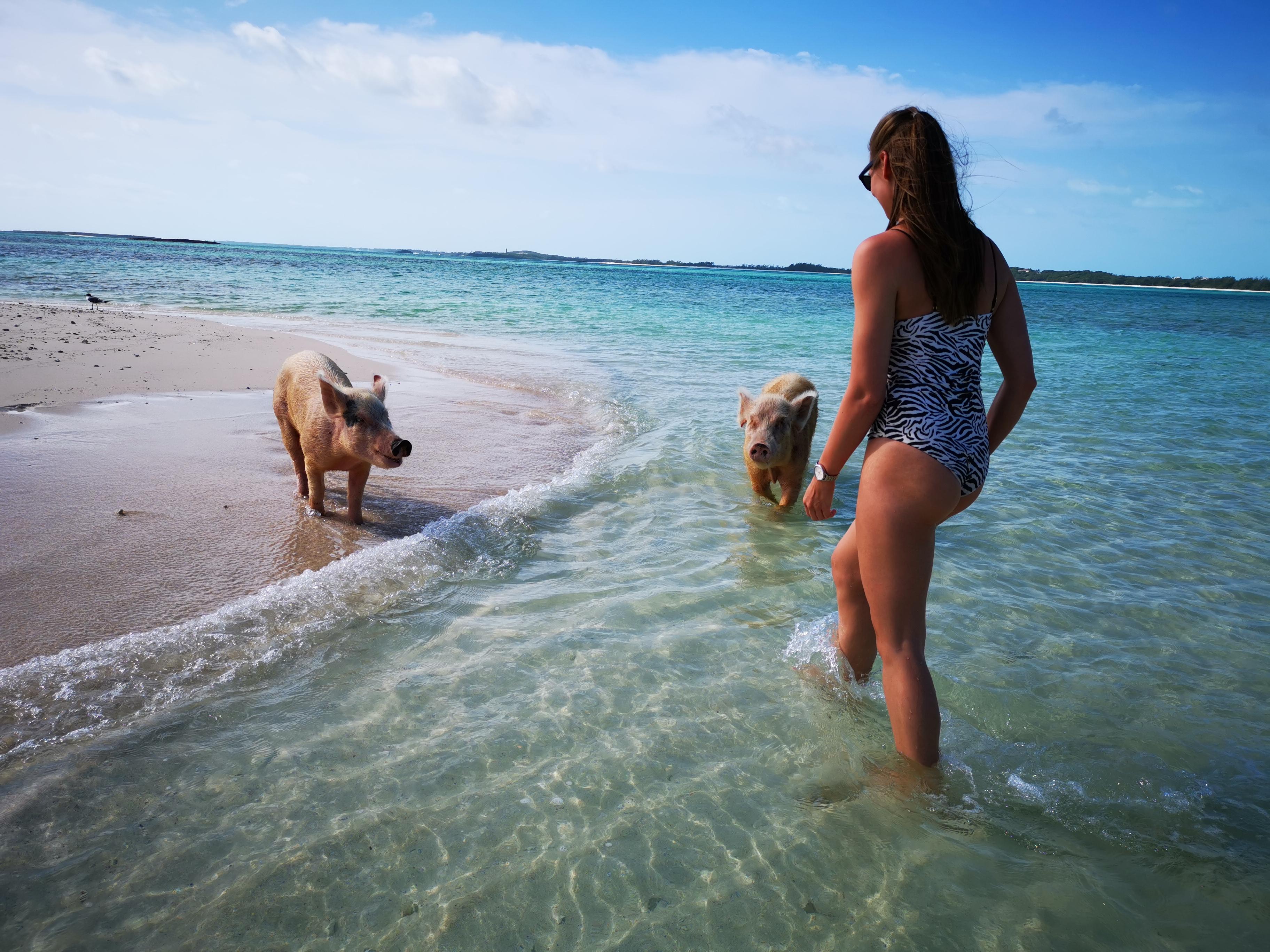 """""""Vi har fundet et hul i markedet, hvor vi blandt andet er oppe imod Nyhavn Rejser, som vi bestemt har respekt for,"""" siger det unge dansk-norske par bag Caribia Travels. Her er det fra Bahamas. Foto: Caribia Travels."""