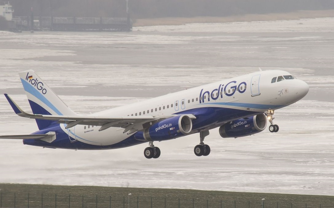 Indiske Indigo, der nu får repræsentation i blandt andet Danmark og Sverige, har i øjeblikket 238 fly. Pressefoto fra Airbus.
