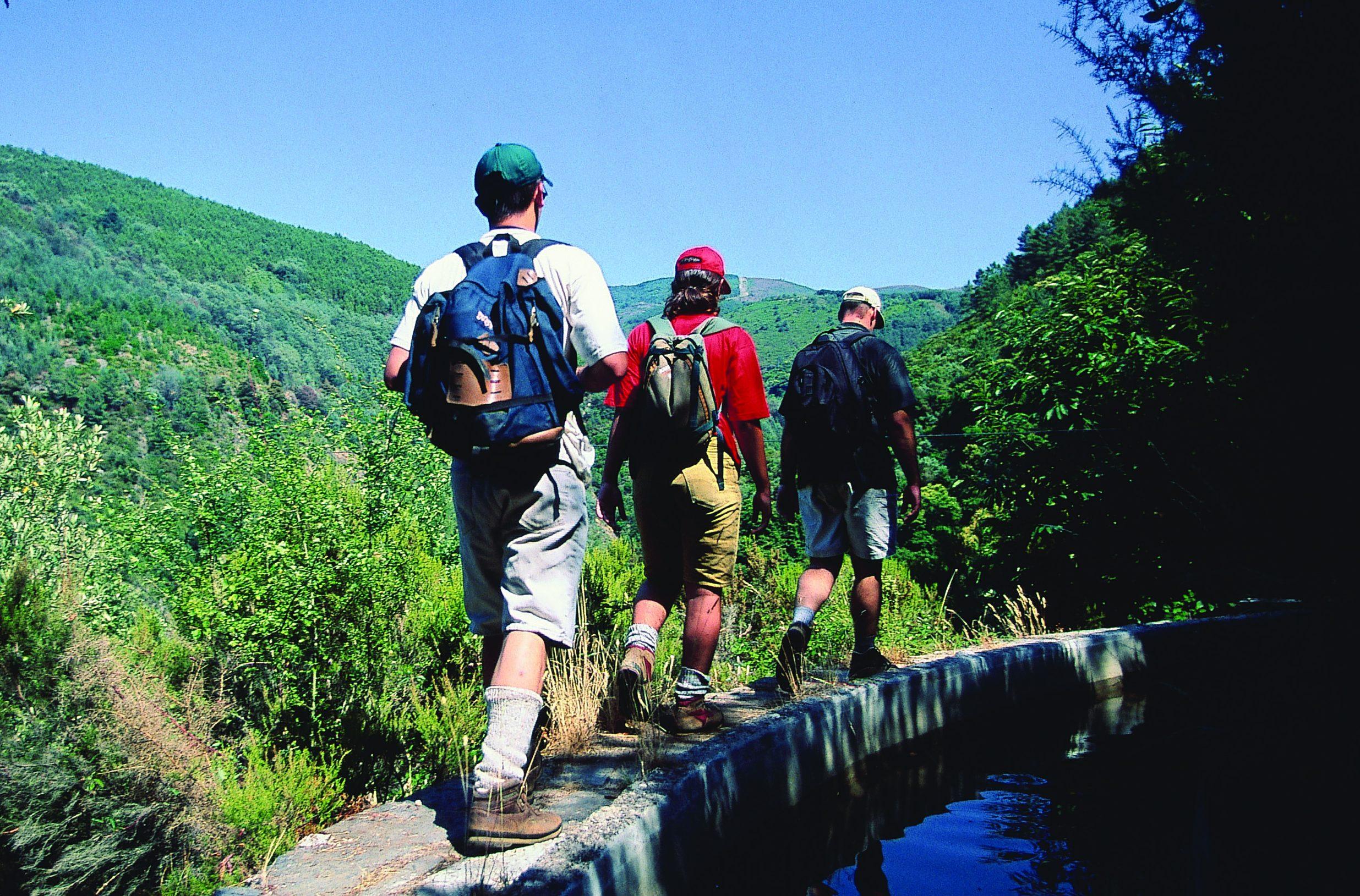 Vandreture er populært hos mange rejsende – her er det trekking i portugisiske Serra da Lousa, cirka midtvejs mellem Porto og Lissabon. Pressefoto fra Turismo de Portugal, Paulo Magalhaes.