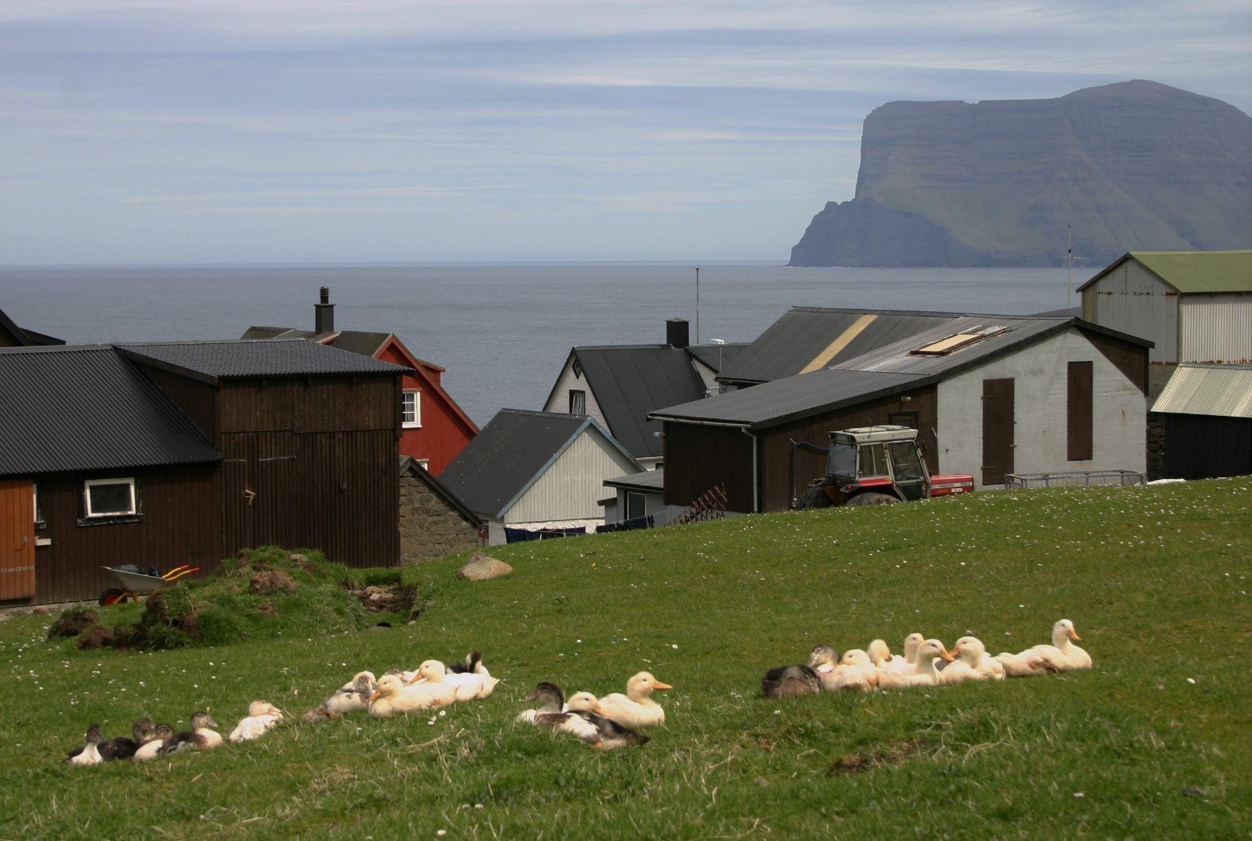 Der er endnu ingen officielle fotos fra den kommende James Bond-film fra Færøerne. Men det vides, at nogle af optagelserne skete i og omkring bygden Trøllanes på øen Kalsoy. Her billede fra Trøllanes; foto Erik Christensen via Wikipedia.
