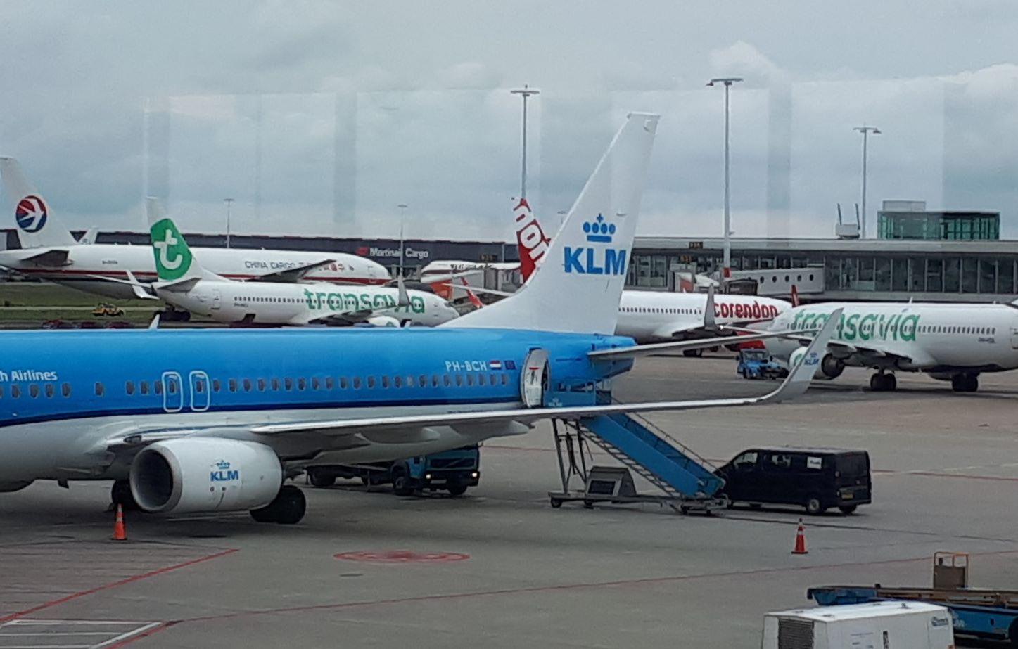 Nogle firmaer rejser stadig næsten normalt men med hensyn til rejsevejledningerne, andre har rejsestop. Der er stor forskel, oplyser tre danske erhvervsrejsebureauer. Foto fra Amsterdam Lufthavn, Henrik Baumgarten.