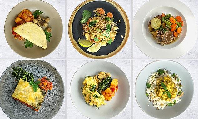 Nu sælger flykøkken i Australien en lang række frosne måltider, der normalt serveres for flypassagerer. Coronakrisen giver mindre efterspørgsel på flymad, derfor sælges der nu til private. PR-foto: Gate Gourmet.