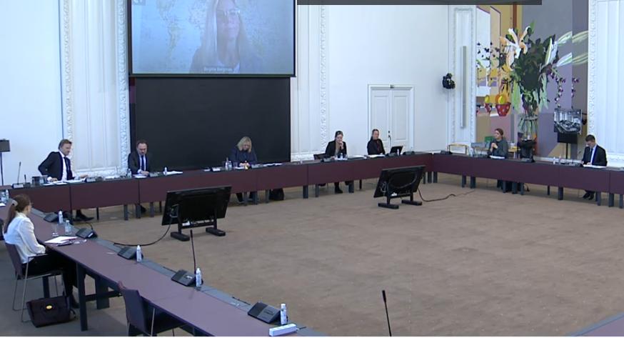 Udsnit af dagens møde i Folketingets erhvervsudvalg. Ikke alle medlemmer var fysisk tilstede, men deltog online. Screenshot fra: TV fra Folketinget.
