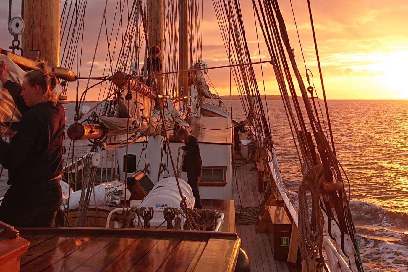 Skonnerten Maja skal til sommer blandt andet sejle med gæster fra Nilles Rejser i såvel Limfjorden som det Sydfynske Øhav. PR-foto via Nilles Rejser.