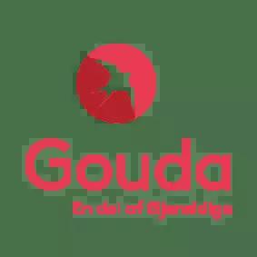 Gouda
