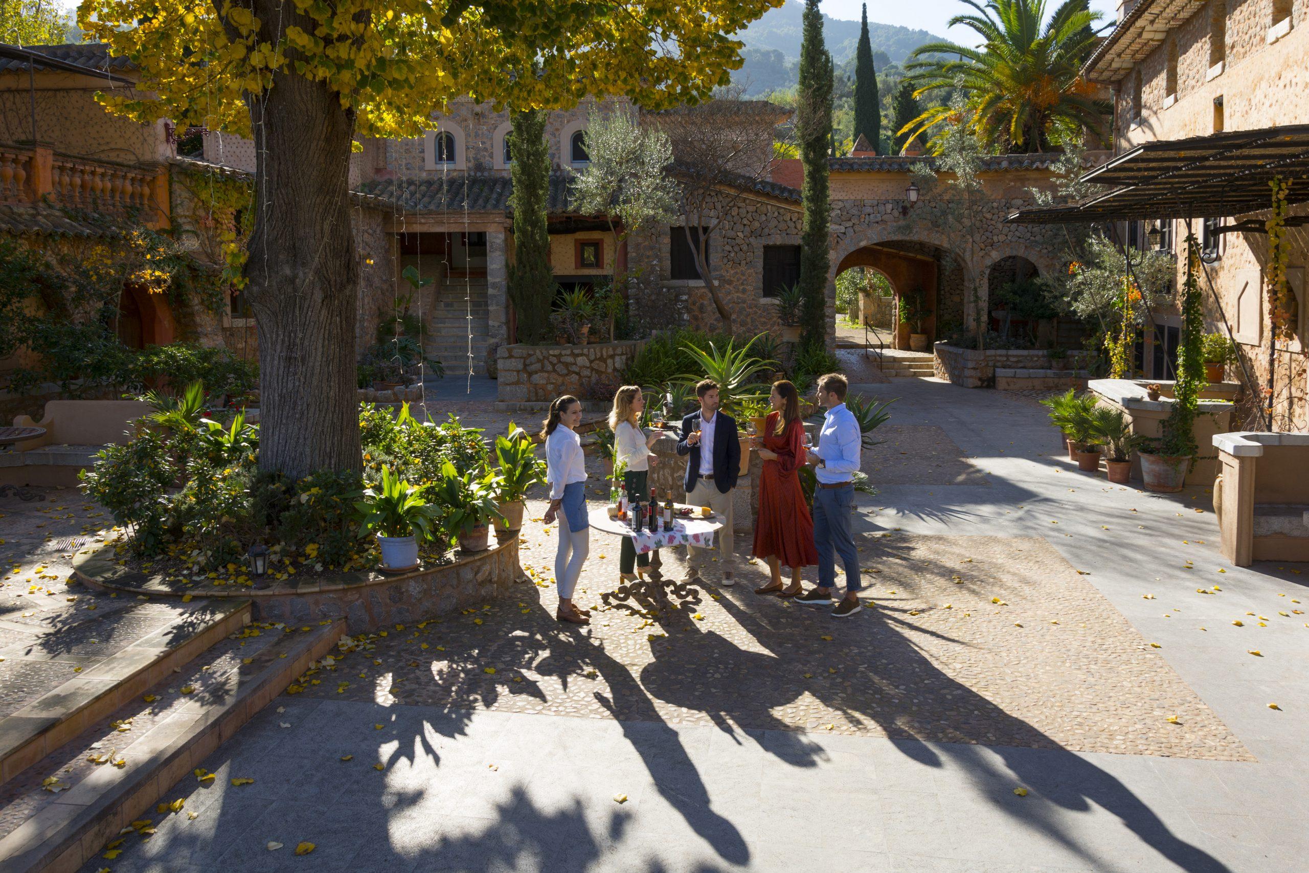 Hovedparten af EU-landene har meldt sig klar til at acceptere det kommende EU-coronapas, eller vil være det inden passet tages i brug omkring 1. juli. Her er det fra Mallorca, en af de destinationer, der allerede er åben for danske ferierejsende. Arkivfoto: Fundació Mallorca Turisme, Mallorcas turistråd.