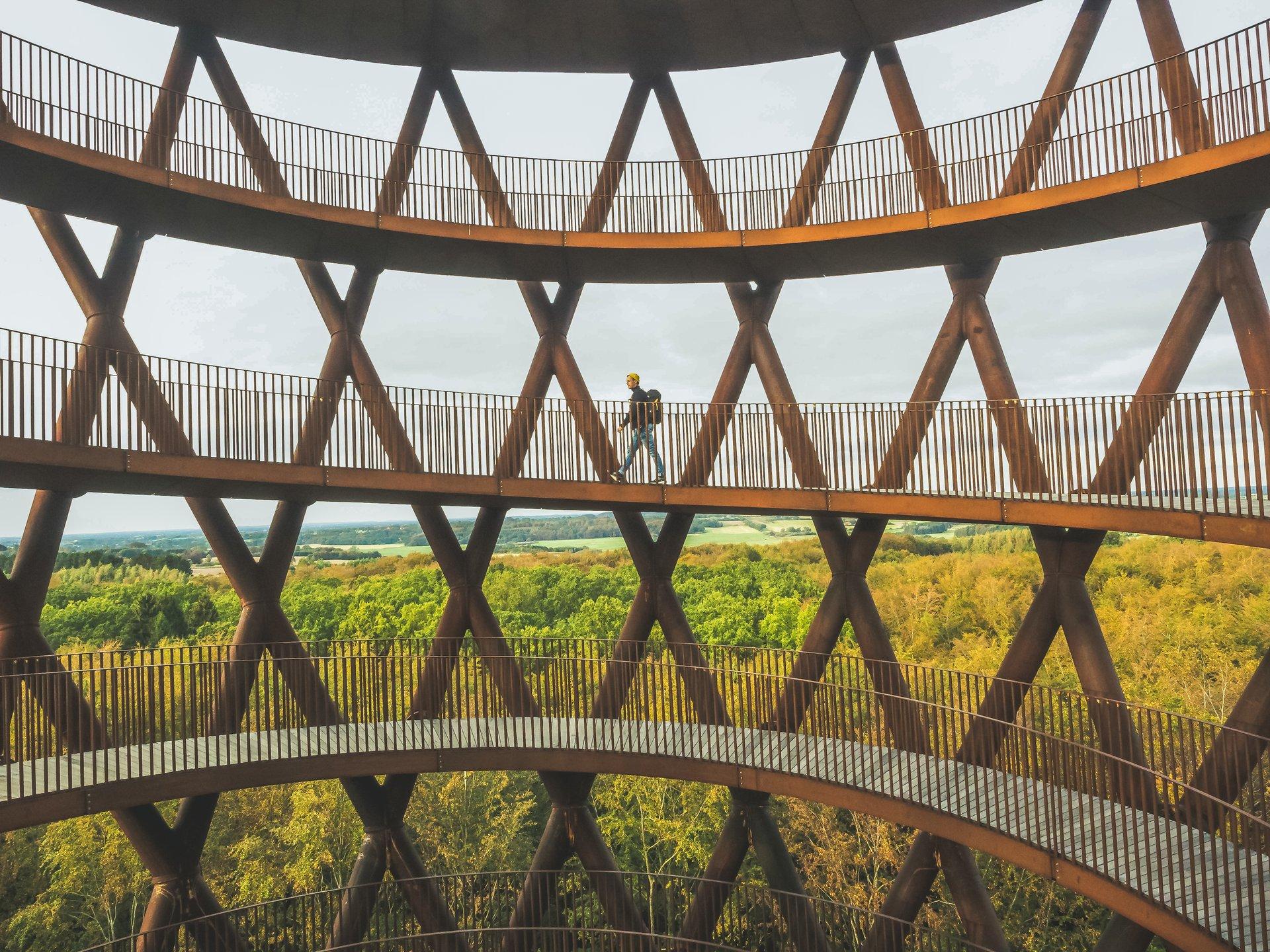 Sydsjællandske Camp Adventure med blandt andet Skovtårnet havde sidste år 384.000 besøgende, en stigning på 32.000 eller lidt over ni procent i forhold til sidste år. Pressefoto via VisitDenmark: Daniel Villadsen.