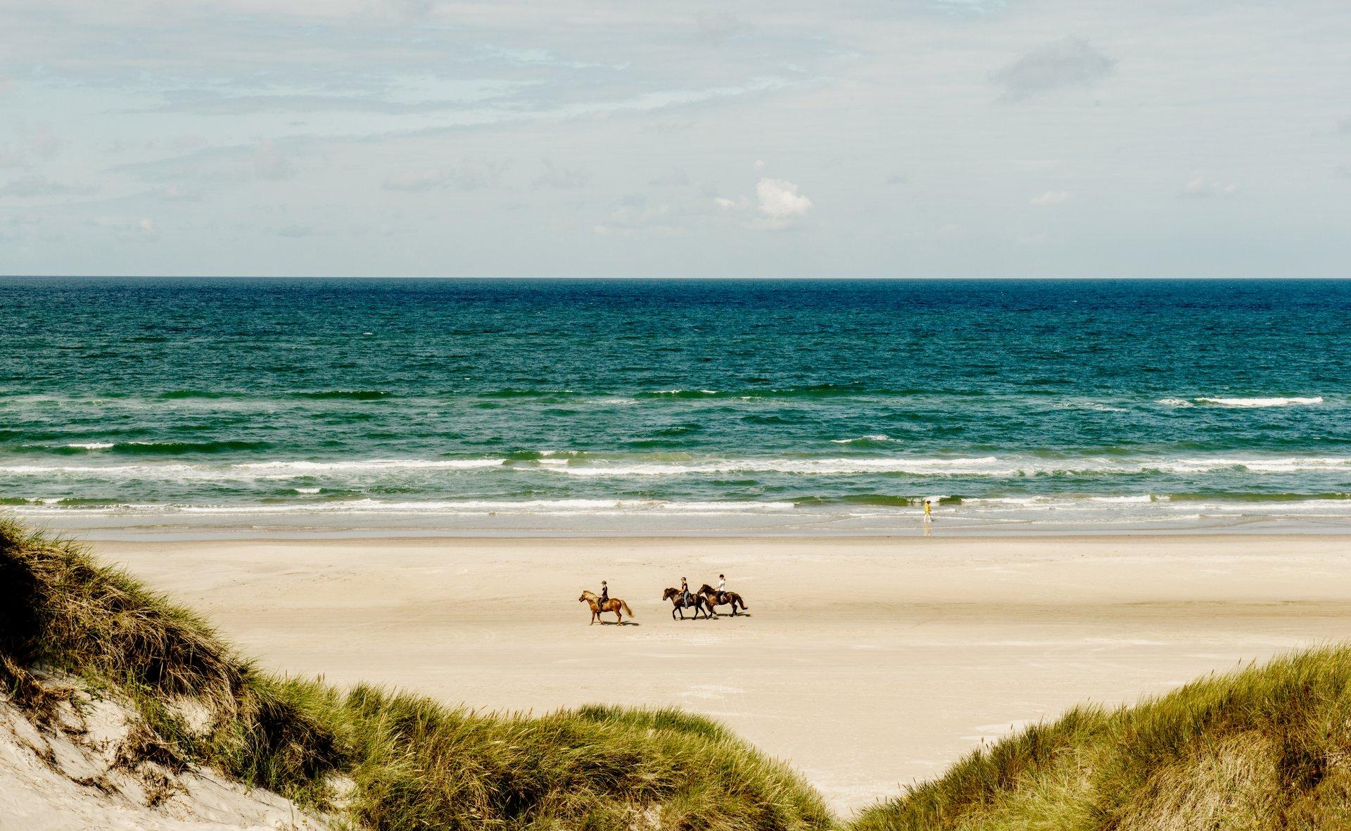 I Hune, der ligger nogle få kilometer inde i landet, tæt på Blokhus, er der planer om et nyt hotel. Pressefoto fra stranden i Blokhus: Mette Johnsen for VisitDenmark.