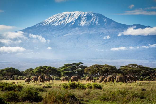 Mange rejsebureauer mister omsætning, fordi mange rejsekunder ikke vil rejse til orange lande, selv om kunderne er færdigvaccineret. Arkivfoto fra Afrika-safari.dk.